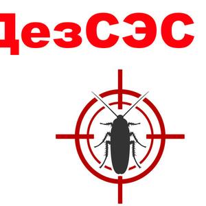 Дезинфекция в Екатеринбурге