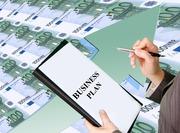 Бизнес-план с гарантией результата